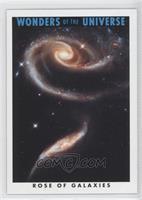 Rose of Galaxies