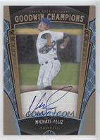 Baseball Prospects Autographs - Michael Feliz