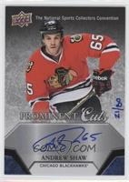 Andrew Shaw /80