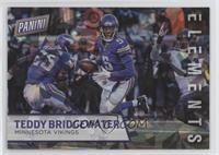 Teddy Bridgewater /25