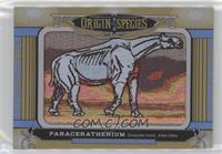 Tier 1 - Paraceratherium