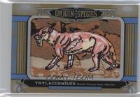 Tier 2 - Thylacosmilus