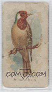 1890 Allen & Ginter Song Birds of the World Tobacco N23 #RHBU - Red-Headed Bunting [Good to VG‑EX]