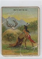 Calling Back The Elk [Poor]