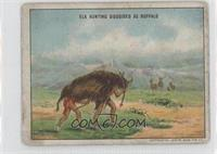 Indians Disguised as Buffalo Hunting Elk [GoodtoVG‑EX]
