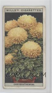 1925 Wills Flower Culture in Pots - Tobacco [Base] #16 - Chrysanthemum [Good to VG‑EX]