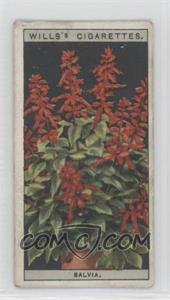 1925 Wills Flower Culture in Pots - Tobacco [Base] #42 - Salvia [GoodtoVG‑EX]