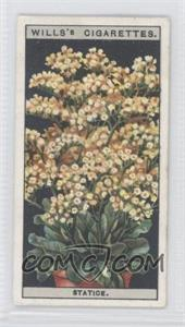 1925 Wills Flower Culture in Pots - Tobacco [Base] #46 - Statice