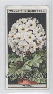 1925 Wills Flower Culture in Pots Tobacco [Base] #40 - Primula [Good to VG‑EX]