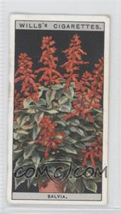 1925 Wills Flower Culture in Pots Tobacco [Base] #42 - [Missing] [GoodtoVG‑EX]