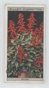 1925 Wills Flower Culture in Pots Tobacco [Base] #42 - Salvia [Good to VG‑EX]