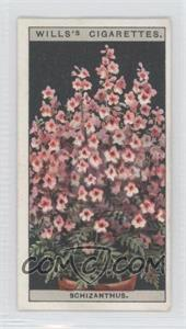 1925 Wills Flower Culture in Pots Tobacco [Base] #43 - Schizanthus [GoodtoVG‑EX]