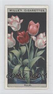1925 Wills Flower Culture in Pots Tobacco [Base] #49 - Tulip