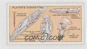 1929 Player's Hidden Beauties - Tobacco [Base] #6 - Circulation Currents-in Hairs.