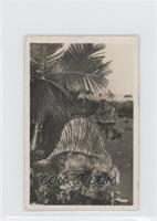 Dimetrodon Gigas [GoodtoVG‑EX]