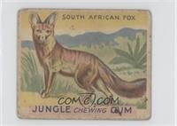 South African Fox [Poor]