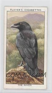 1932 Player's Wild Birds - Tobacco [Base] #31 - The Raven