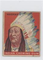 Washakie
