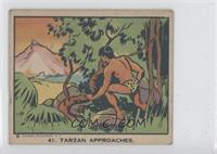 Tarzan approaches