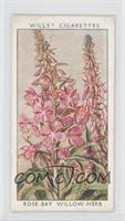 Rose-Bay Willow-Herb [Good to VG‑EX]