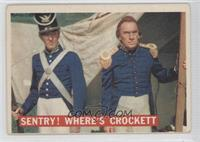 Sentry! Where's Crockett