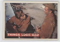 Things Look Bad
