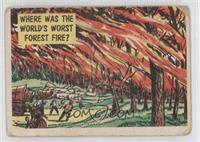 Where was the World's Worst Forest Fire? [Poor to Fair]