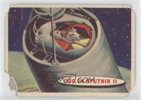 Dog in Sputnik II [Poor]
