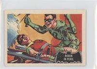 Robin in Peril