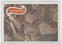 Ape Madhouse! [GoodtoVG‑EX]