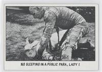 No Sleeping In A Public Park, Lady! [GoodtoVG‑EX]