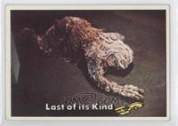 Last of its Kind [GoodtoVG‑EX]