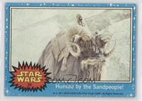 Hunted by the Sandpeople!