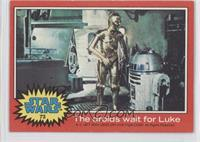 The Droids Wait For Luke