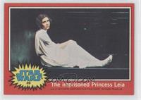 The Imprisioned Princess Leia
