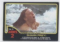 SHARK PREY!