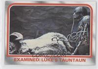 Examined: Luke's Tauntaun