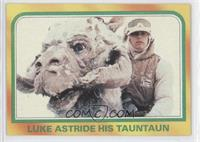 Luke Astride His Tauntaun