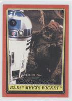 R2-D2 Meets Wicket