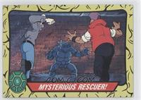 Mysterious Rescuer!