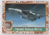 Phoenix Missiles On F-14 (Brown