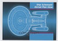 Ship Schematic Dorsal Plan View