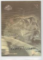 Tyrannosaurus Rex [GoodtoVG‑EX]
