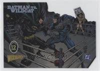 Batman Vs. Wildcat