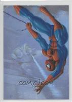 Spider-Man vs. Scarlet Spider