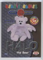 Birthday or Rookie - Halo the Bear
