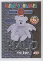 Halo the Bear