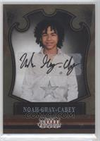 Noah Gray-Cabey /249