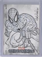 Spider-Man (Mike Miller) /1
