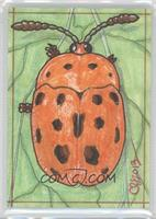 Clinton Yeager (Beetle) /1